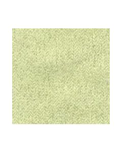 Ferragamo Citrus Green Fabric